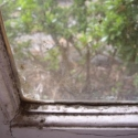 Dehumidify to Stop Condensation causing mould on windows with solar dehumidification