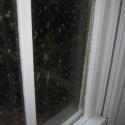 Stop condensation, prevent mould on windows and ensure you have a dry home