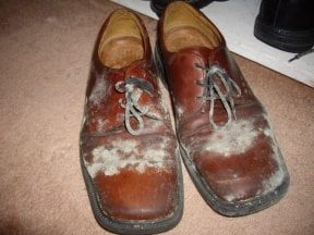 Mouldy Shoes 007